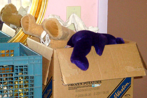 Teddy Bears in Box