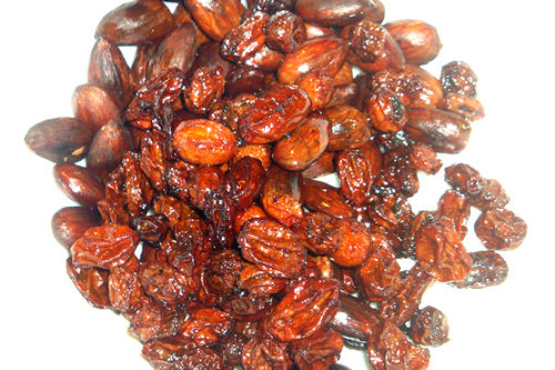 Mexican Mole Sauce - Raisins and Almonds