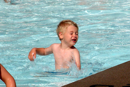 Little Guy Swims