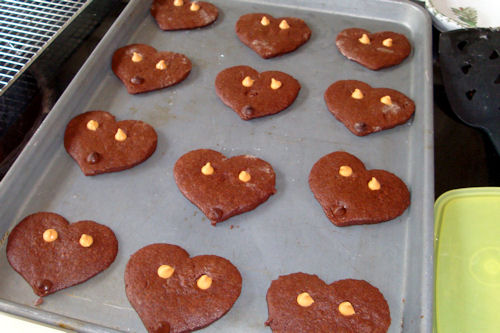 Teddy Bear Cookies - Add Butterscotch and Chocolate Chips