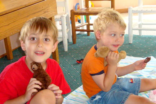Teddy Bear Cookies - Boys at Picnic