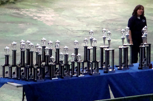 Chicago- Great America, Trophies