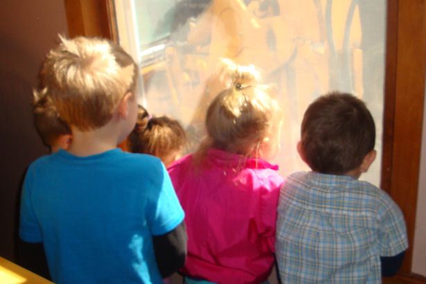 Egress Window - Kids Watching