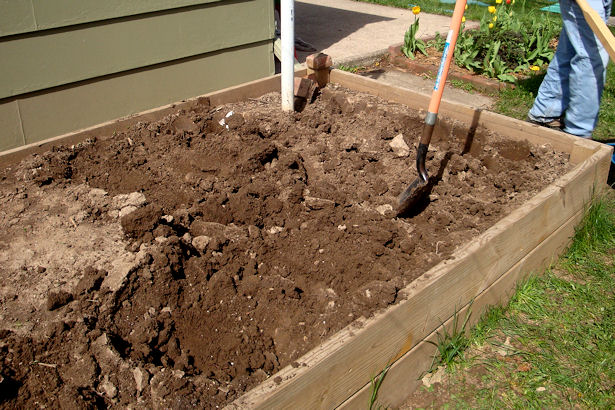 Square Foot Gardening Preparation - Removing Dirt