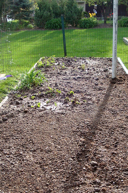 Square Foot Gardening Preparation - Whole Garden