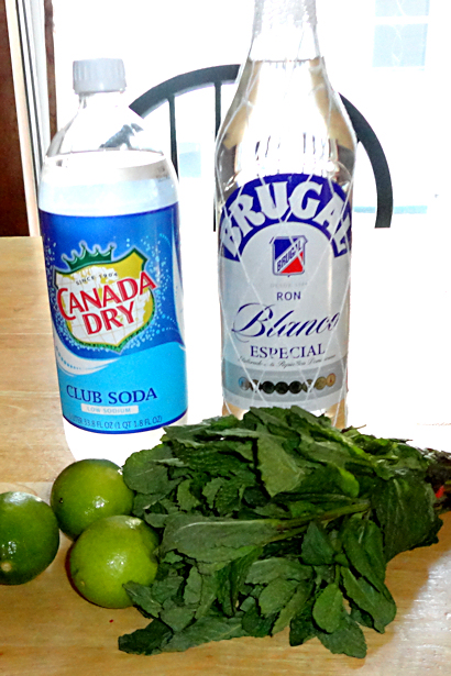 Best Mojito Recipe - Ingredients