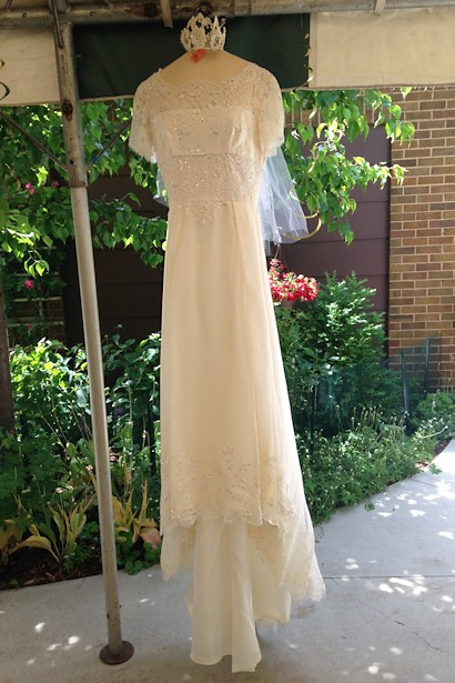 Anniversary Picnic - Wedding Dress