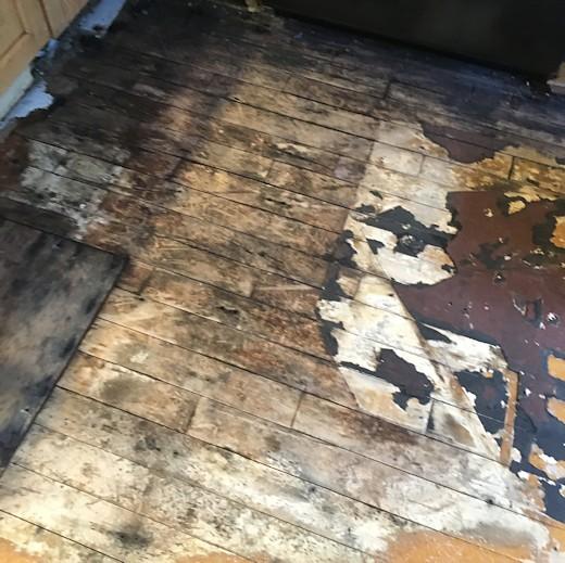 Floor Redo - Day Six & Seven - Water Damaged Floor