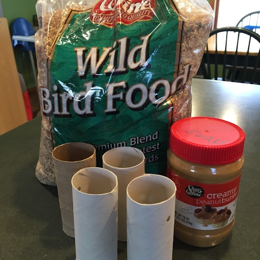 Homemade Bird Feeder -